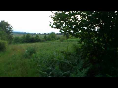 Videoinspelning under en jakt i Kroatien