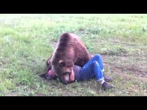 Man blir attackerad av björn