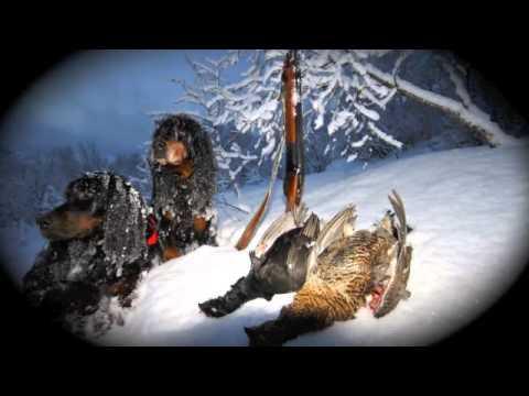 Jakt & Fiske 2012